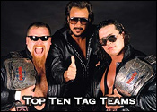 Top Ten Professional Wrestling Tag Teams